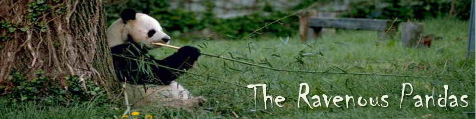 pandaslogoweb