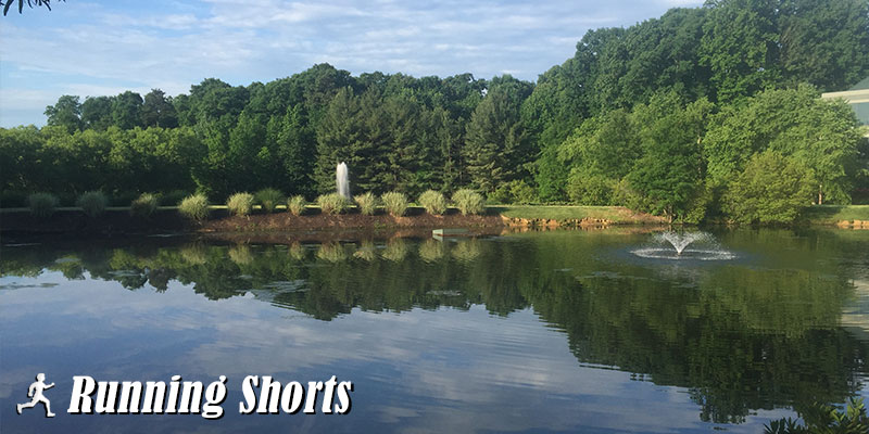 View pond Greensboro